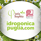 idroponica, puglia, bari, marco, domenico, di cosmo, marketing, communication, comunicazione
